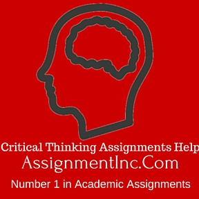 Critical Thinking Assignments Help