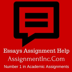 Essays Assignment Help