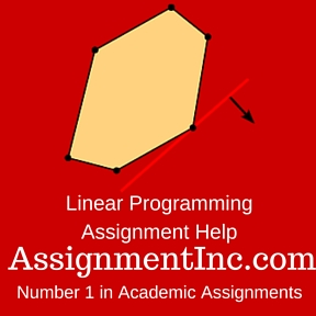 Linear Programming Assignment Help
