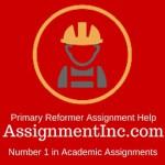 Primary Reformer