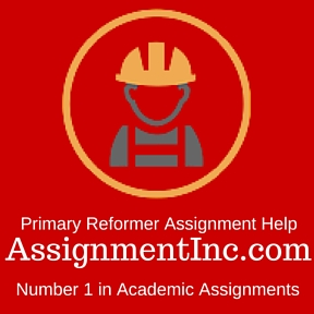 Primary Reformer Assignment Help