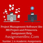 Project Management Software like MS Project and Primavera