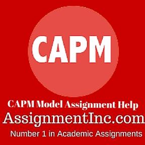 CAPM Model Assignment Help