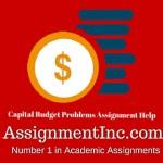 Capital Budget Problems