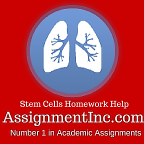 Stem Cells Homework Help