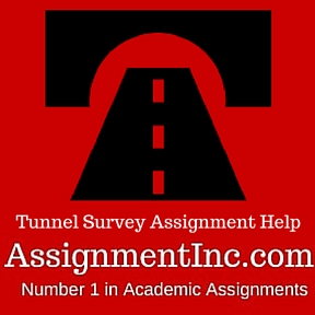 Tunnel Survey Assignment Help