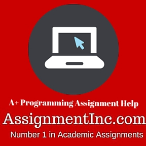 A+ Programming Assignment Help