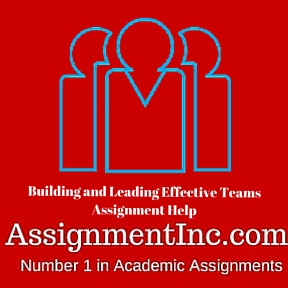Building and Leading Effective Teams Assignment Help