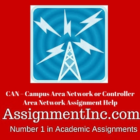 CAN - Campus Area Network or Controller Area Network Assignment Help