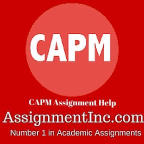 CAPM Assignment Help