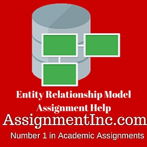 Entity Relationship Model Assignment Help