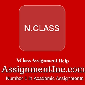NClass Assignment Help