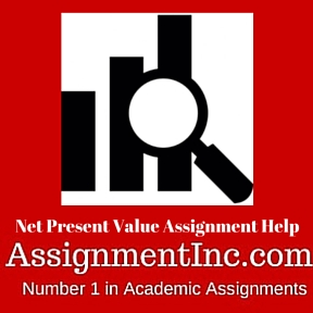 Net Present Value Assignment Help