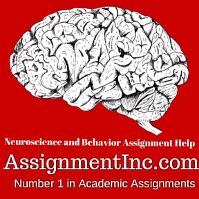 Neuroscience and Behavior Assignment Help