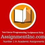 Non Linear Programming