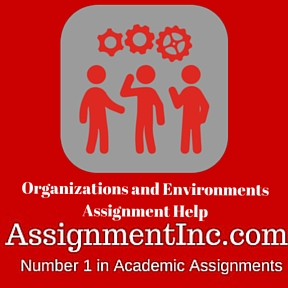 Organizations and Environments Assignment Help
