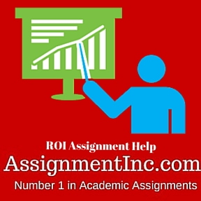 ROI Assignment Help