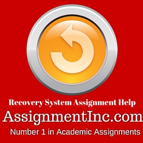 Recovery System Assignment Help