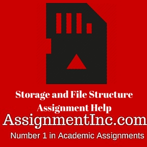Storage and File Structure Assignment Help