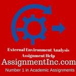 External Environment Analysis