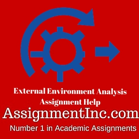 External Environment Analysis Assignment Help