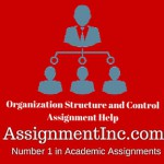 Organization Structure and Control