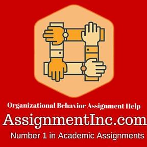 ORGANIZATIONAL BEHAVIOR ASSIGNMENT HELP!