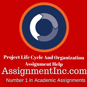 Project Life Cycle And Organization Assignment Help