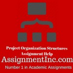 Project Organization Structures
