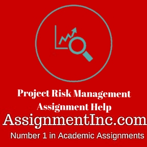 Project Risk Management Assignment Help