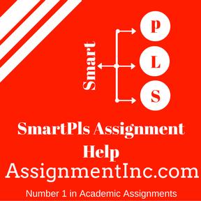 SmartPls Assignment Help
