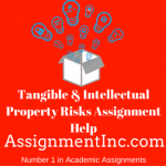 Tangible & Intellectual Property Risks