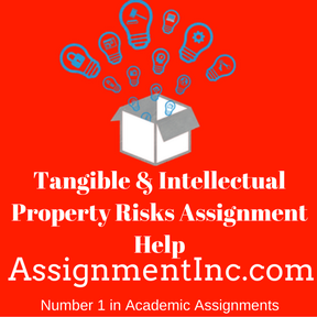 Tangible & Intellectual Property Risks Assignment Help