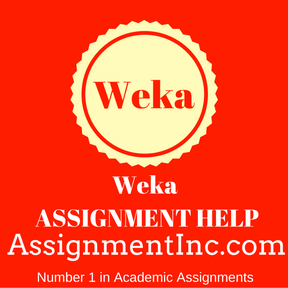 Weka ASSIGNMENT HELP