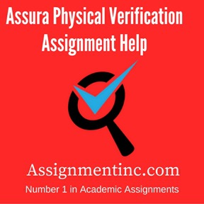 Assura Physical Verification Assignment Help
