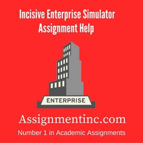 Incisive Enterprise Simulator assignment Help