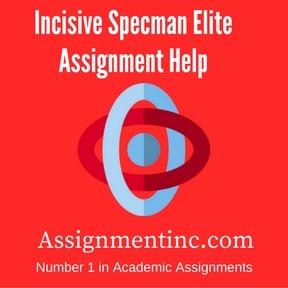 Incisive Specman Elite Assignment Help