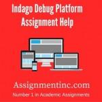 Indago Debug Platform