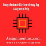 Indago Embedded Software Debug App