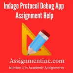 Indago Protocol Debug App