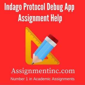 Indago Protocol Debug App Assignment Help