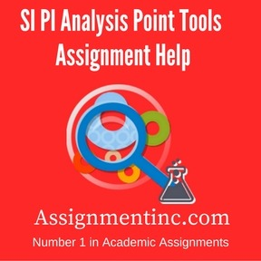 SI PI Analysis Point Tools Assignment Help