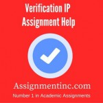 Verification IP