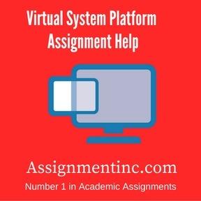 Virtual System Platform Assignment Help