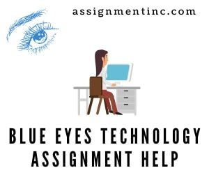 Blue Eyes Technology Assignment help