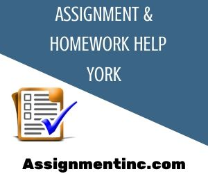 Assignment & Homework Help York