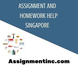 Assignment & Homework Help Singapore